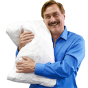 mike lindell my pillow guy random