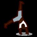 capoeira random